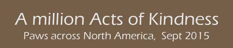 Acts_banner